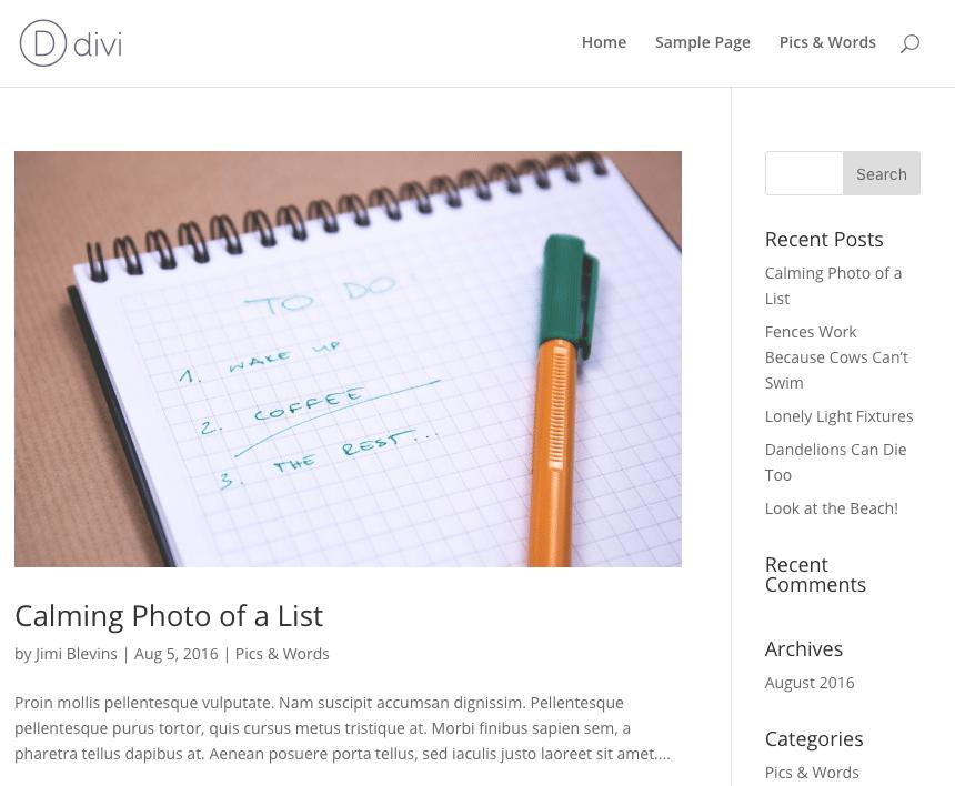 Divi Wordpress Theme Options - Changing the Logo - Mozaic Technology