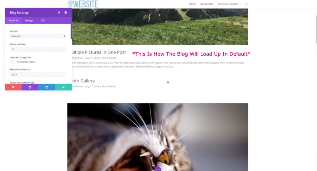 how to add blog divi