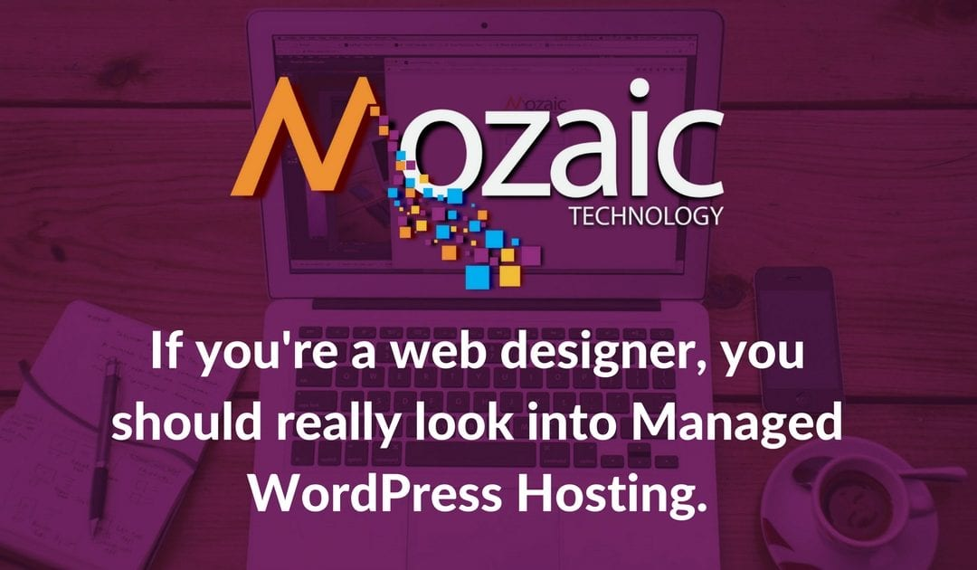 If you're a web designer, you should really look into Managed WordPress Hosting.
