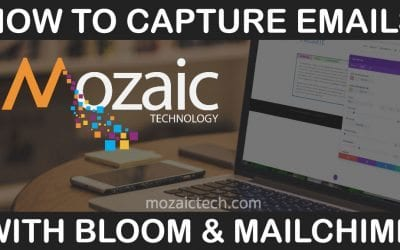 How to capture emails with Bloom & Mailchimp – Setting up the API Key