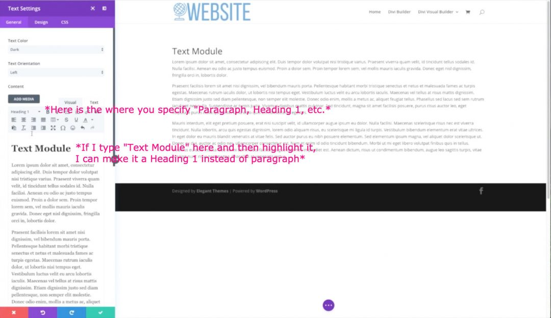 Divi Tutorial - How to use the Text Module in the Divi
